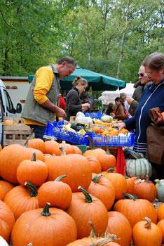 Bauernmarkt in Worpswede